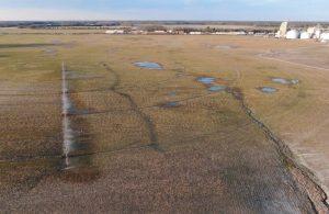 ground-contamination